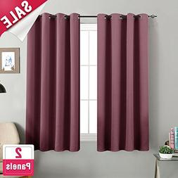 Room Darkening Curtains for Living Room 63 inches Long Moder